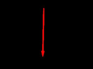 直線上の位置ベクトル-01-1